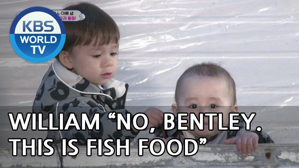 William & Bentley go to an indoor fishing spot with Sam! [The Return of Superman/2019.01.20]