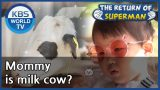Mommy is milk cow? [The Return of Superman/ ENG / 2020.09.20]